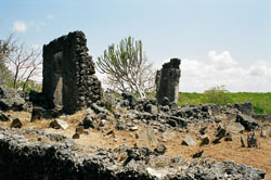The Necropolis mosque