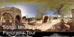 Panoramic tour of Songo Mnara
