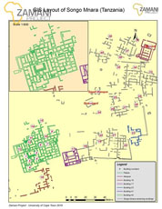 GIS map of site by Zamani project